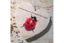 Marble Heart Inspiration Ladybird