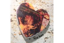 Marble Heart Inspiration Lapis Philosophorum